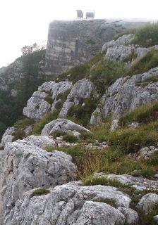 Fortificazione-campale-e-camouflage